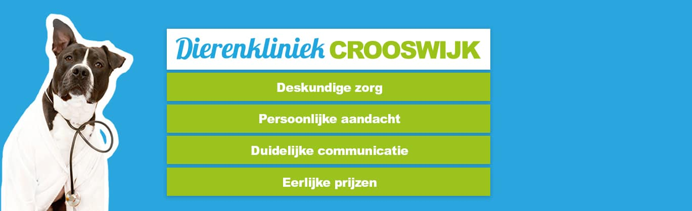 Dierenkliniek Crooswijk Rotterdam
